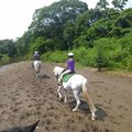 Horseback Ride along the Nosara River