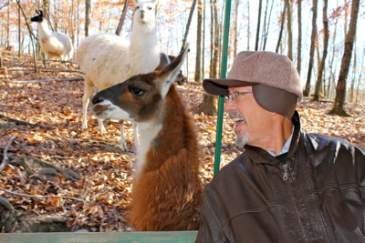 Granddaddy and His Friend the Llama